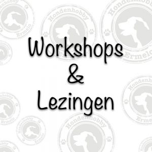 Workshops en lezingen